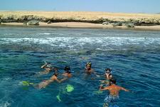 Snorkeling At Ras Mohammed