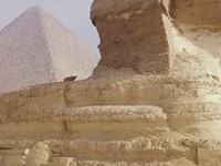 Egypt Tours Package - Cairo