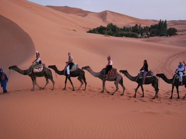 Honeymoon in Morocco Photos