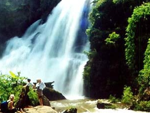 Thailand Easy Hiking and Trekking in real jungle cloud forest. Photos