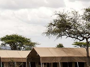 6 Days Serengeti Migration Camping Safaris Photos