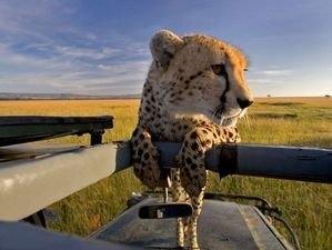 Photography Safari in Tanzania Fotos