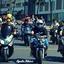 Fox Bikers