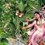 Nandu Reddy
