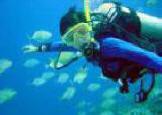 Gili Diving