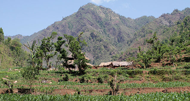 Chitwan Chepang Hill Trekking (Home stay) Photos