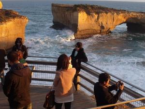 Great Ocean Road 12 Apostles One Day Tour Photos