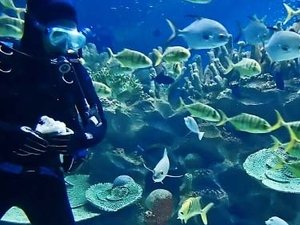 Andaman ,Port Blair Tours Packages,Local Travels Agency Photos