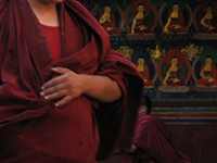 Monk In Drepung Monastery