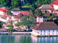 Amazing Beautiful Kandy Perahara