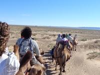 Gobi Desert Mongolia Adventure Tour