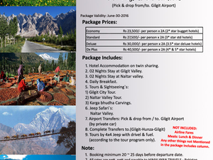 Gilgit & Naltar Honeymoon & Family Tour Fotos
