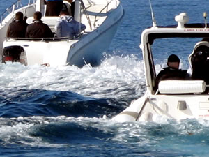 Taxi Boat From Split To Solta, Brac, Hvar, Vis Photos