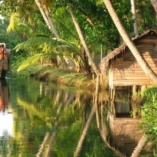 Backwaters And Canals