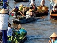 City Tour, Mekong Delta Tour, Airport Transfer Pick up