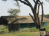 Serengeti Heritage Luxury Tented Camps