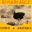 Remakable Travel