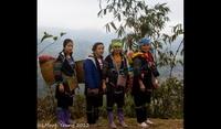 Trekking Through The Mountains With The M'Huong, Sapa
