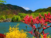 Garden Kashmir India