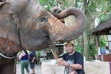 JUNGLE SAFARI IN THAILAND
