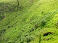 Waterfall In Nuwara Eliya