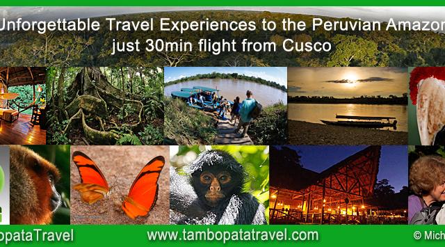 Deep Rainforest Experience, Peru Photos