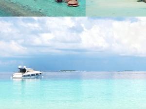 Last Minute Offer - Maldives