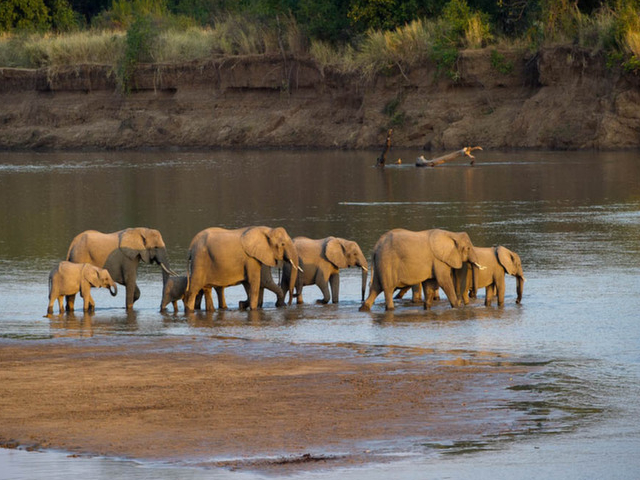 3 Day Kruger National Park Safari At Kapama River Lodge Photos