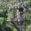 Flight Of The Gibbon - Angkor