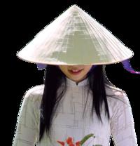 Vietnam Indian