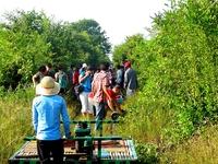Sunsai Tours Battambang Bamboo Train 30
