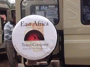 4 Days Wildlife Safari's in Tanzania Photos