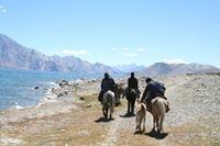 Ladakh Himalaya