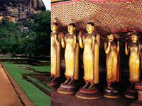 04 Day : Sigiriya And Dambulla