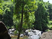 Pool Near The Foot Of The Dudhsagar Falls, Central Goa