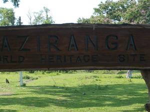 KAZIRANGA TOUR PACKAGE