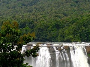 Kochi, Munnar, Thekkady, Kumarakom, Alleppey Tour Fotos