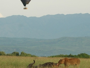 Masai Mara Fotos