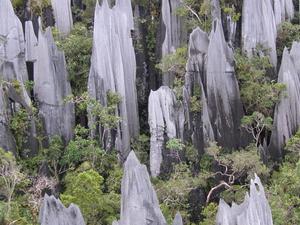 Pinnacles Mulu National Park Fotos