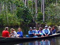 Eco Amazonia 2