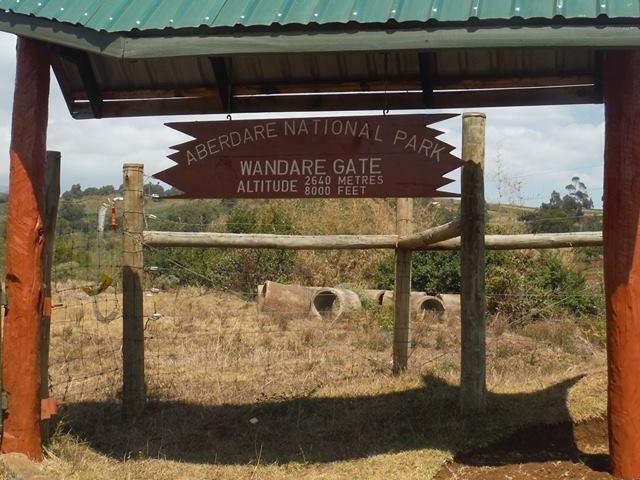 Adventure Aberdares from Nairobi, Kenya Photos
