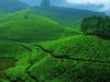 Fascinating South India
