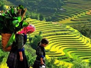 North Vietnam Tour