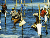 Beach Holiday Package Offer Sri Lanka