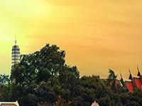 Welcome DreamTrip : Bangkok, Thailand