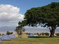 Simba Campsite Ngorongoro 1