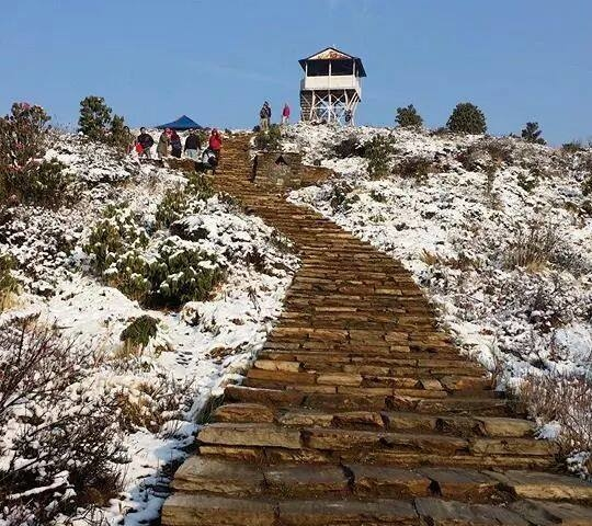 Ghorepani Poon Hill Trek ! Photos