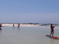 Paddleboard Tour to Shell Island