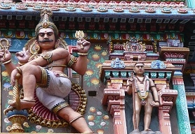 Southern Splendour Temples and Spices of India Fotos