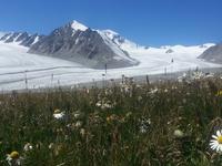 Wild Wild West Mongolia